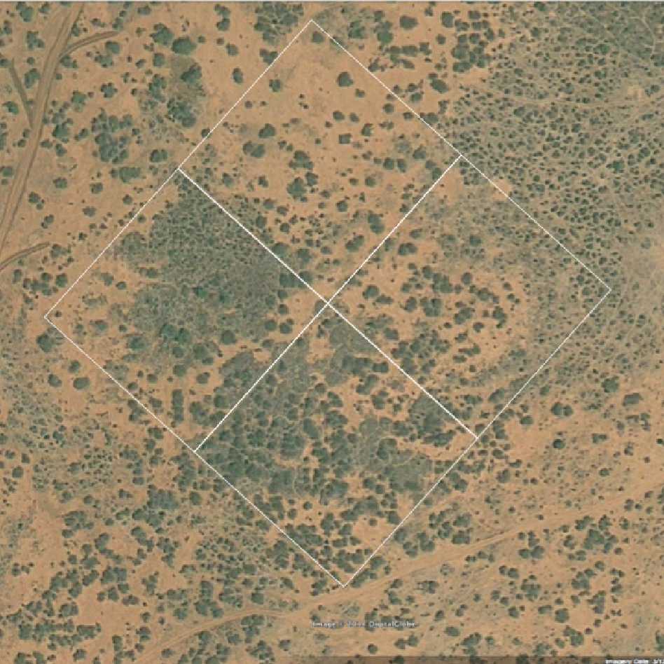 Aerial map of location of UHURU plots