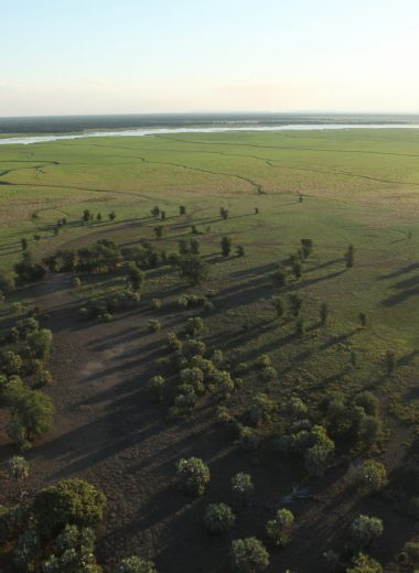 Aerial View of Gorongosa with Pungue river